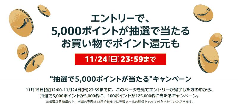 ブラックフライデー 5,000ポイントプレゼントキャンペーン